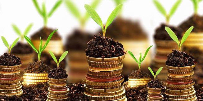 Contoh Riba Dalam Investasi
