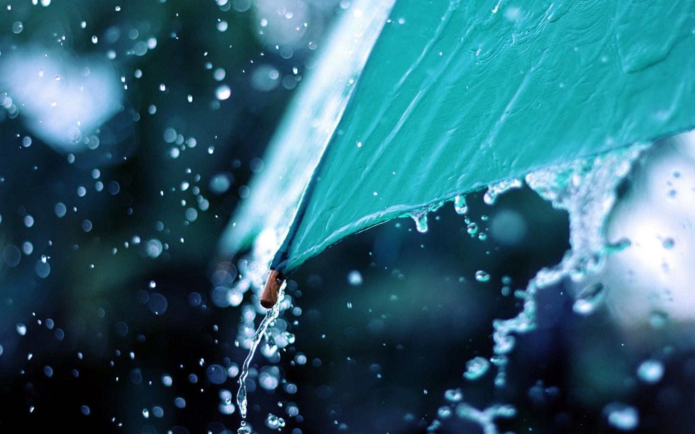 Kala Hujan Datang Menyapa Musim Hujan Tahun Ini