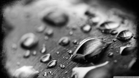 6 Hal Yang Mesti Diperhatikan Sebelum Amar Makruf Nahi Mungkar