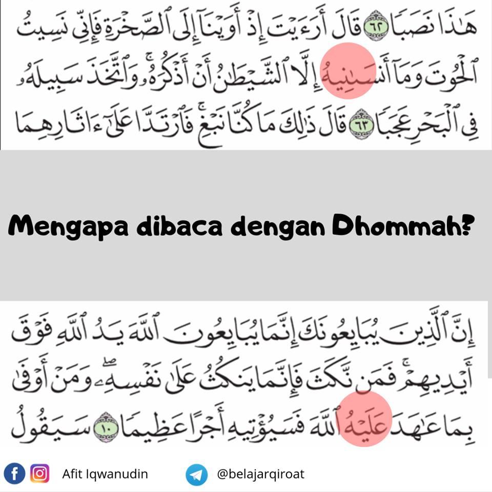 Keindahan Sastra Al-Quran Surat Al-Fath Ayat 10, Kenapa Dibaca 'Alaihu Bukan 'Alaihi bimbingan islam
