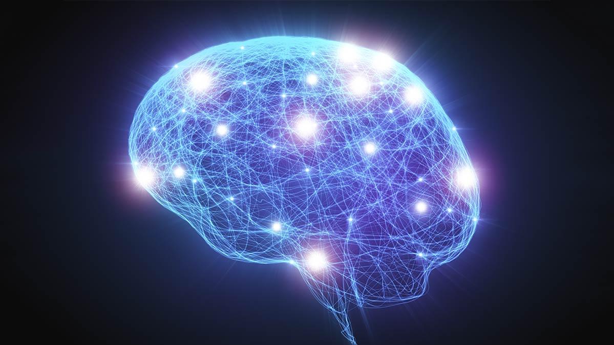 Tips Mencerdaskan Otak Dalam Syariat Islam bimbingan islam