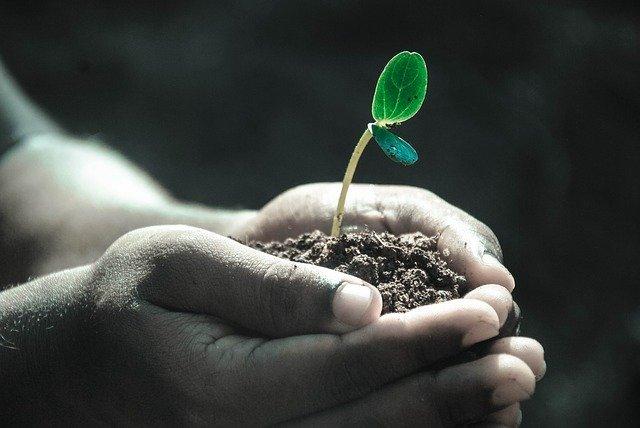Bolehkah Wakaf Dengan Uang yang Akan Dibelikan Tanah