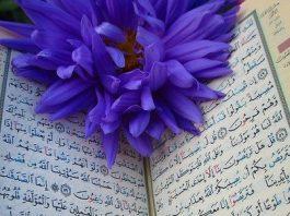 Al Quran Bisa Menjadi Sebab Pahala atau Dosa, Kok Bisa bimbingan islam