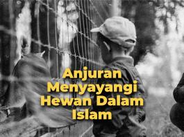 Anjuran Menyayangi Hewan dalam Islam